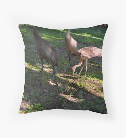 Fred's got himself a family Throw Pillow
