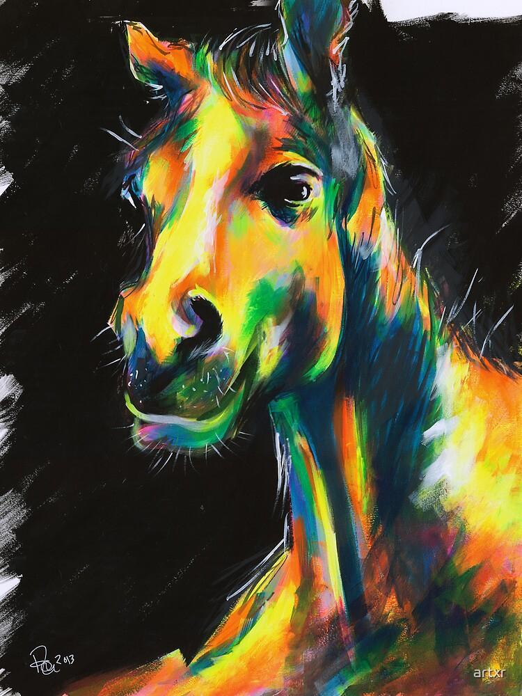 HORSE V.01 by artxr