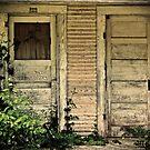 door #1 or door #2 by nessbloo