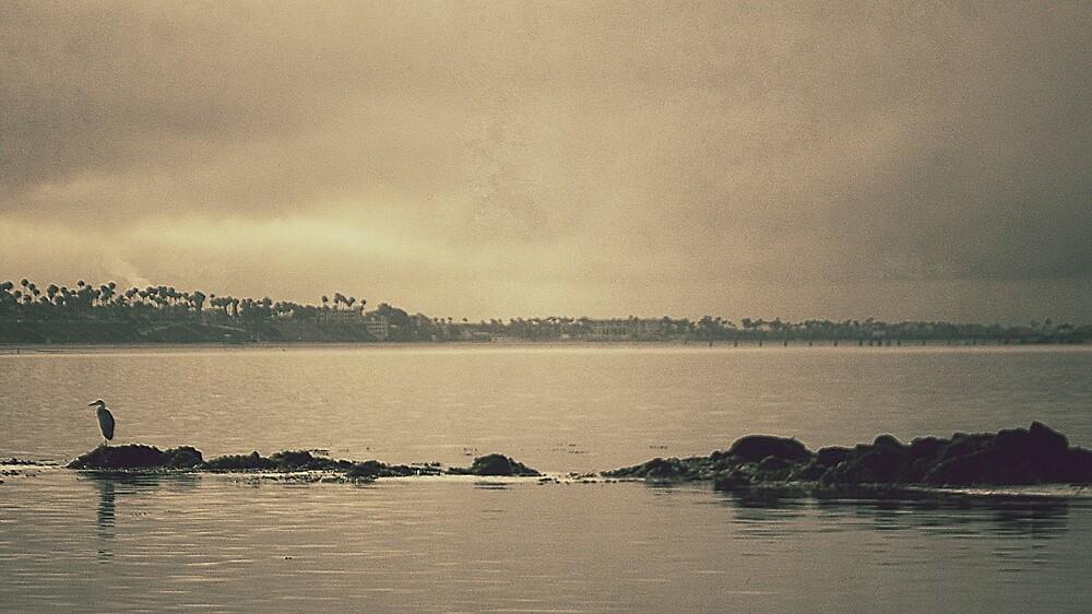 Gloomy Bay by RichCaspian