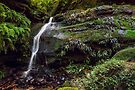 Waterfall Creek by vilaro Images