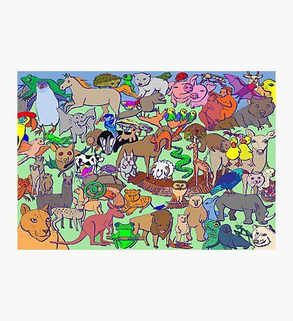 World Wildlife - Coloured Photographic Print