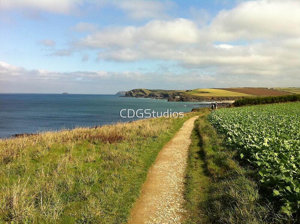 Coastal Path To Trevone Bay by CDGStudios