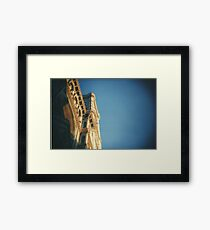 Analogic Florence Framed Print
