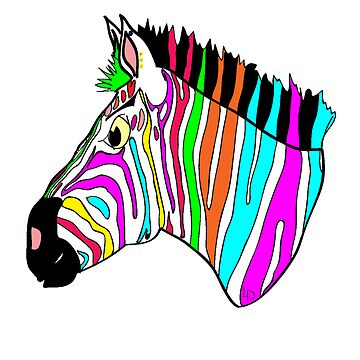Funky Zebra by LesterBear