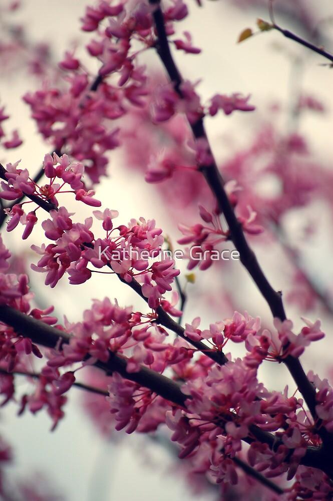 Cherry Blossom by Katherine Grace