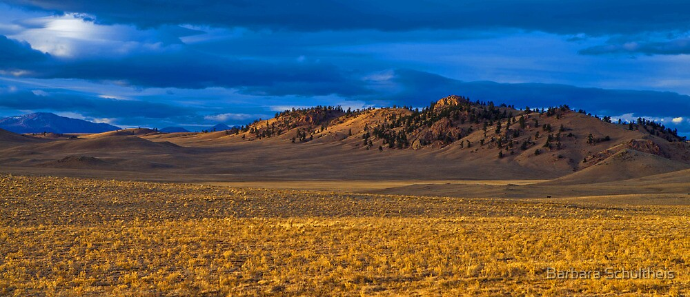 Lone Landscape by Barbara Schultheis