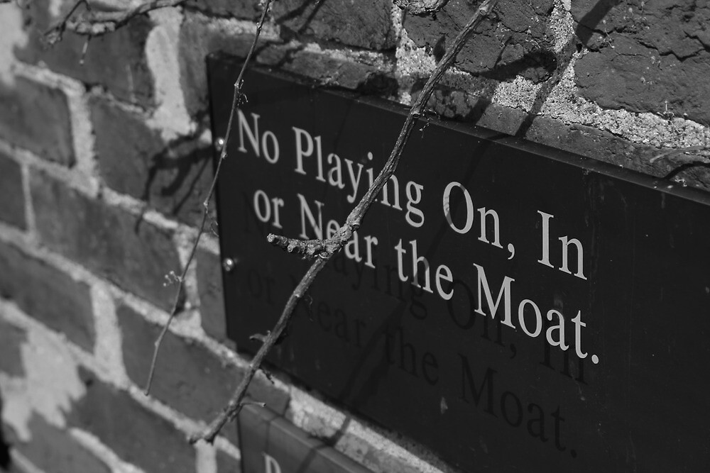 No Playing by Dominic Perry