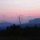 Cowan Cove - Moosehead Lake in Greenville Maine by MaryinMaine