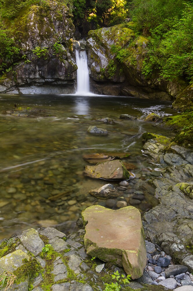 Darling Creek - West Coast Trail, Vancouver Island, Canada by Phil McComiskey
