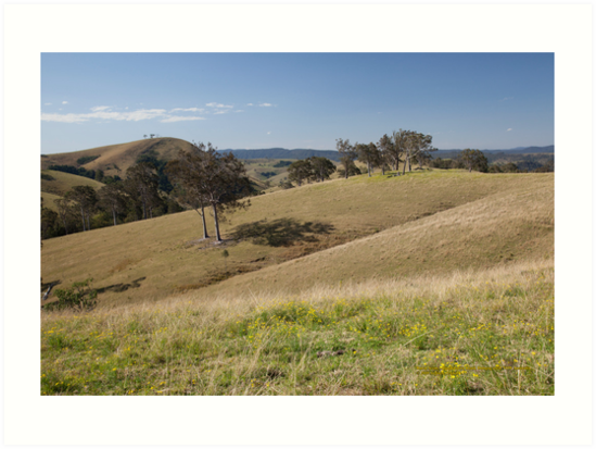 View from Bingleburra Rd, Dungog by SNPenfold