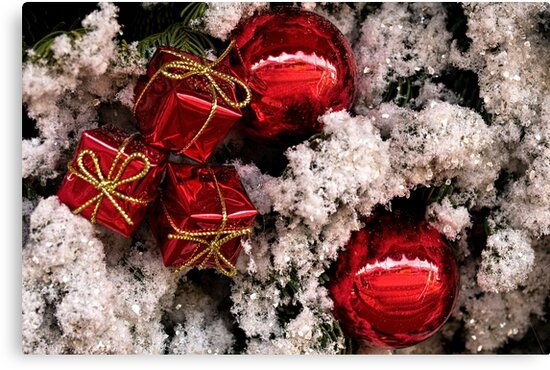 Christmas red and white by Celeste Mookherjee