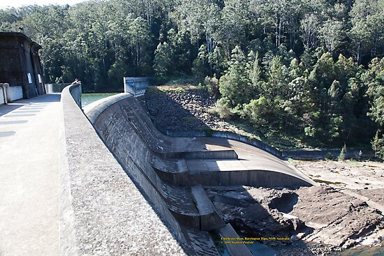 Chichester Dam, Barrington Tops, NSW by SNPenfold