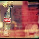 Pop Bottles and Butterflies by Rachel Sonnenschein