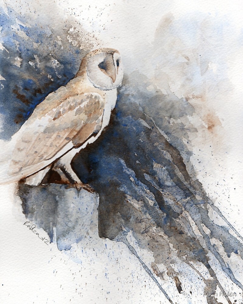 Night owl by Ruth Nolan
