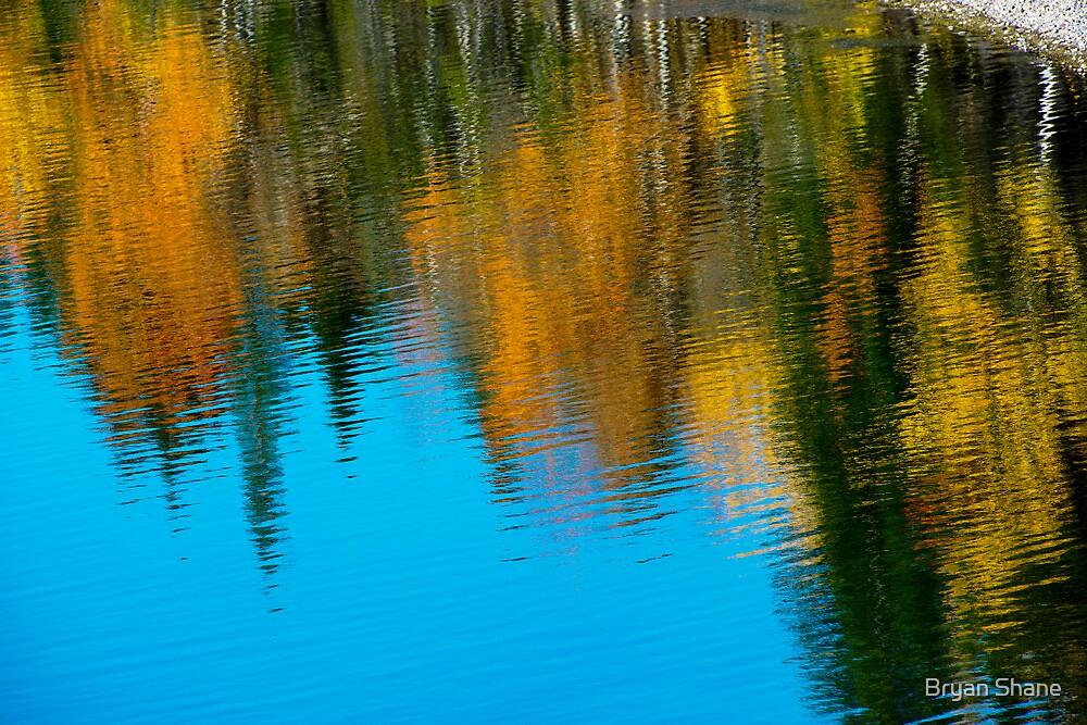 Grand Teton Magic by Bryan Shane