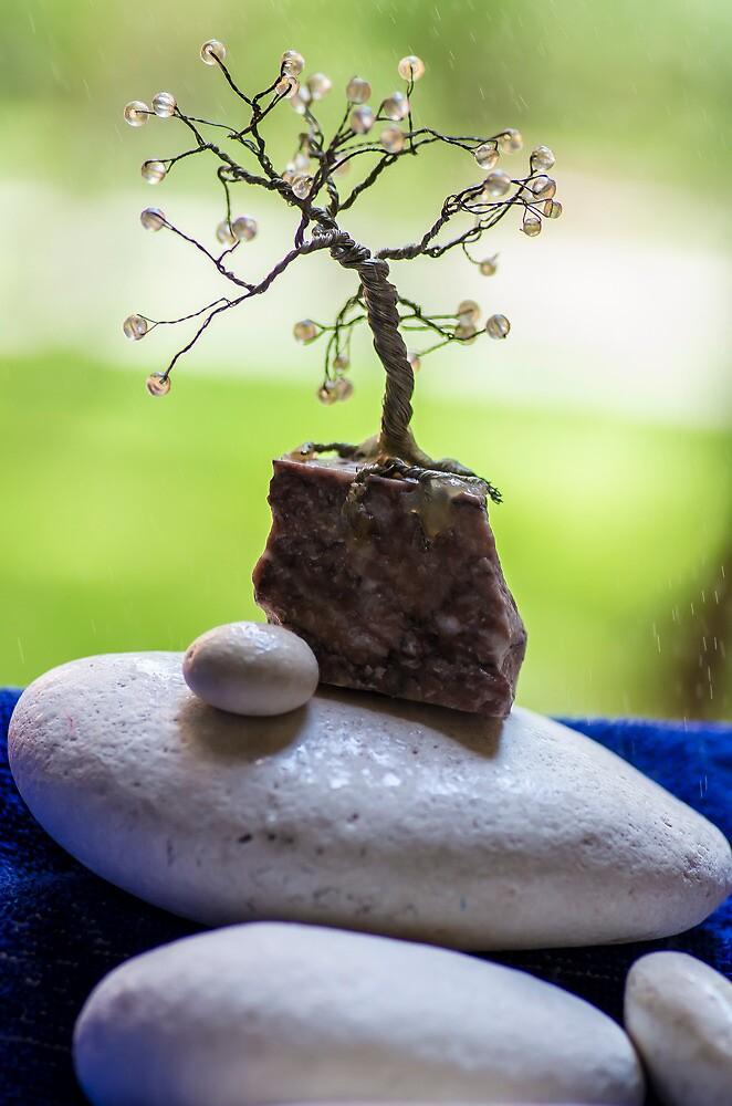 Little Tree by Sotiris Filippou