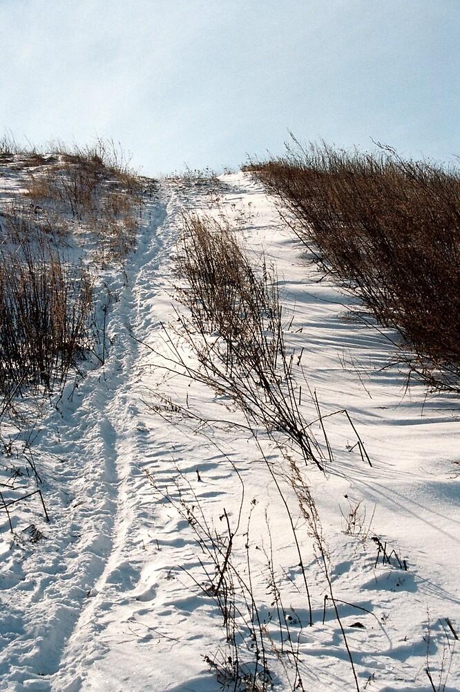 path way to u by verivela