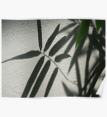 leaf on wall Poster