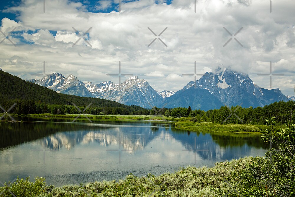 Teton Reflections by Suzi Harbison