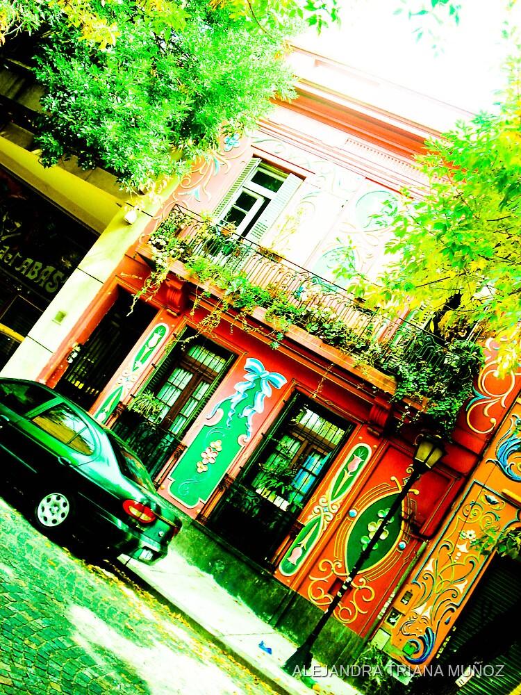 Colorful street and historic. by ALEJANDRA TRIANA MUÑOZ