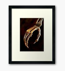 The Lovely Bones Framed Print