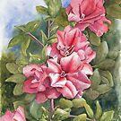 Spring Azaleas by Anne Sainz