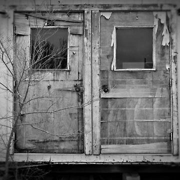 Doors by NemoOmne