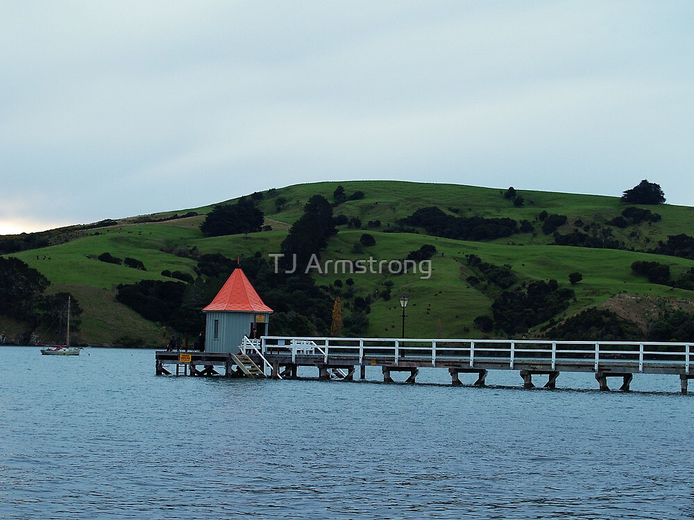 Akaroa, New Zealand by TJ Armstrong