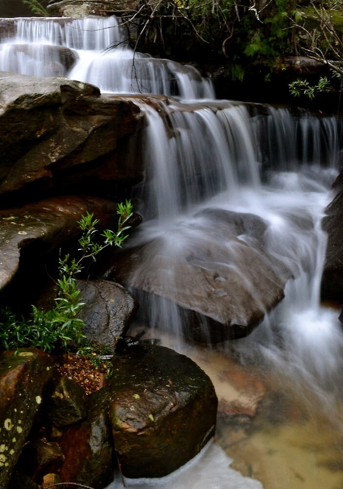 McCarrs Creek waterfall by tompullinger