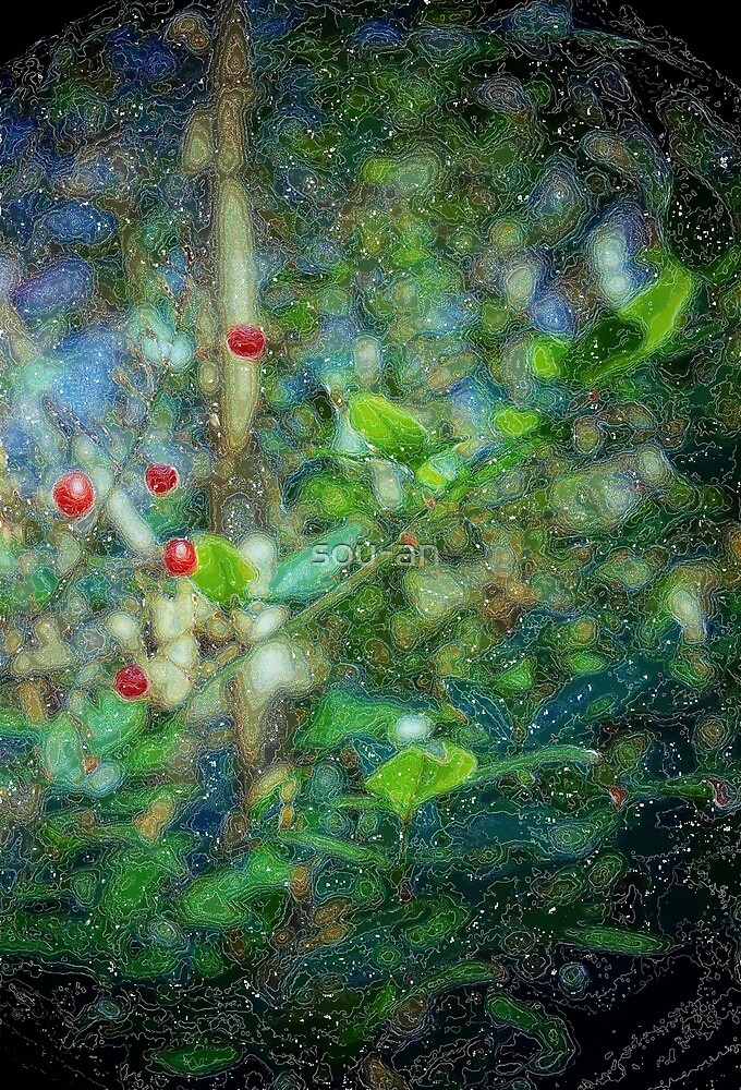 red seed's universe by sou-an