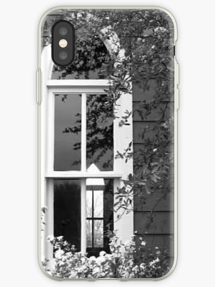 Transparent Window by cknox