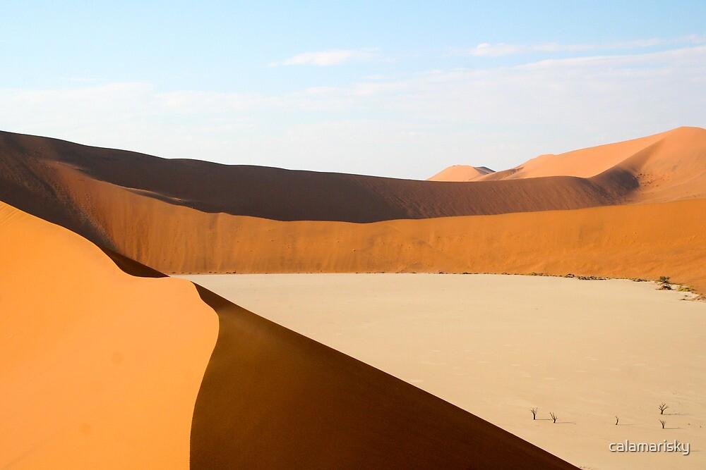 Sand Dunes by calamarisky