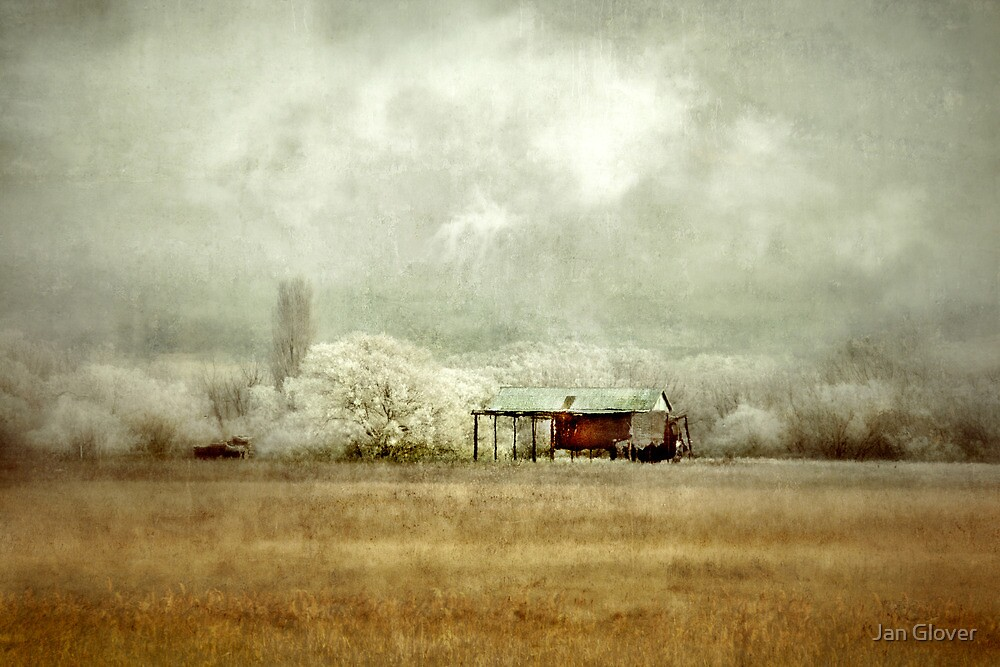 Shed on a Frosty Morning by Jan Glover
