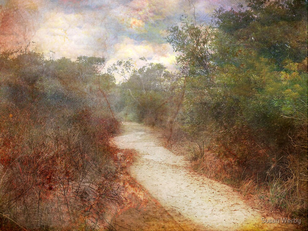 Path of De-Light by Susan Werby