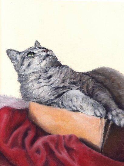 Cat in a Box by Pam Humbargar