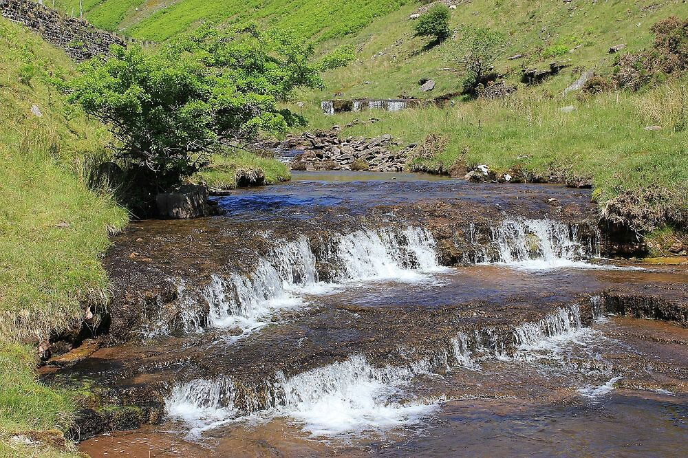 Mountain Stream by Dave646