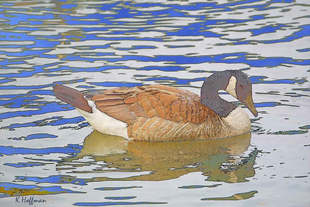 Duck Resting by Kenneth Hoffman