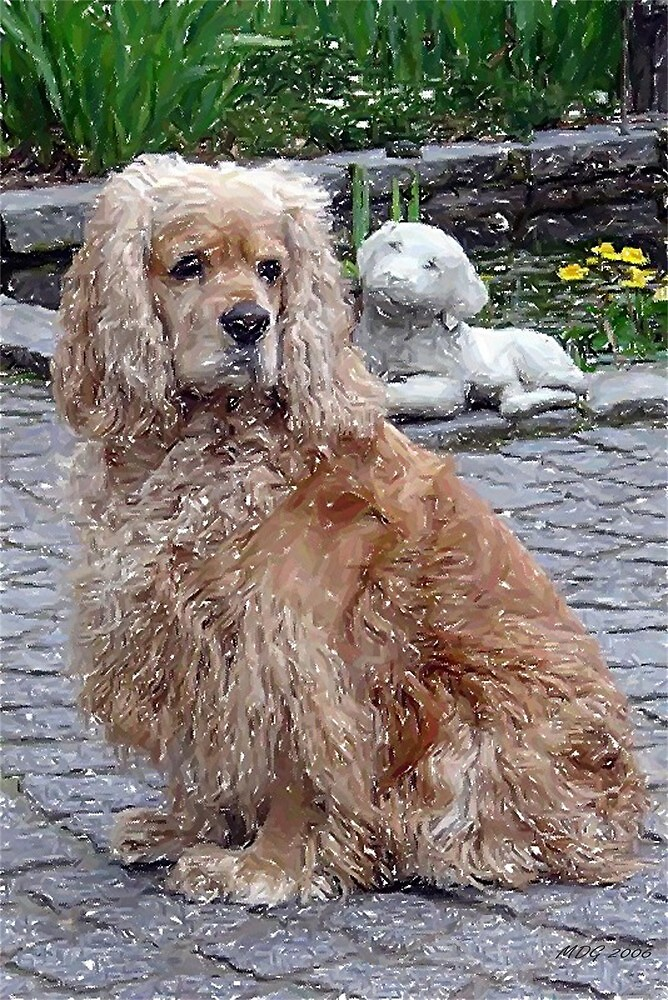 Cocker Spaniel Blonde Dog by Oldetimemercan