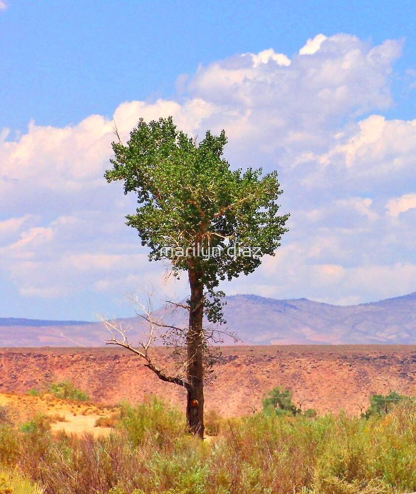 The Tree by marilyn diaz