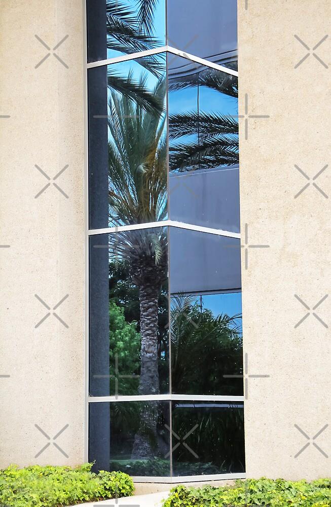A Corner Reflection by Heather Friedman