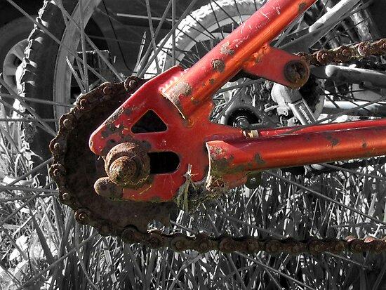 Rusty Red Bike III by Hannah Ruth