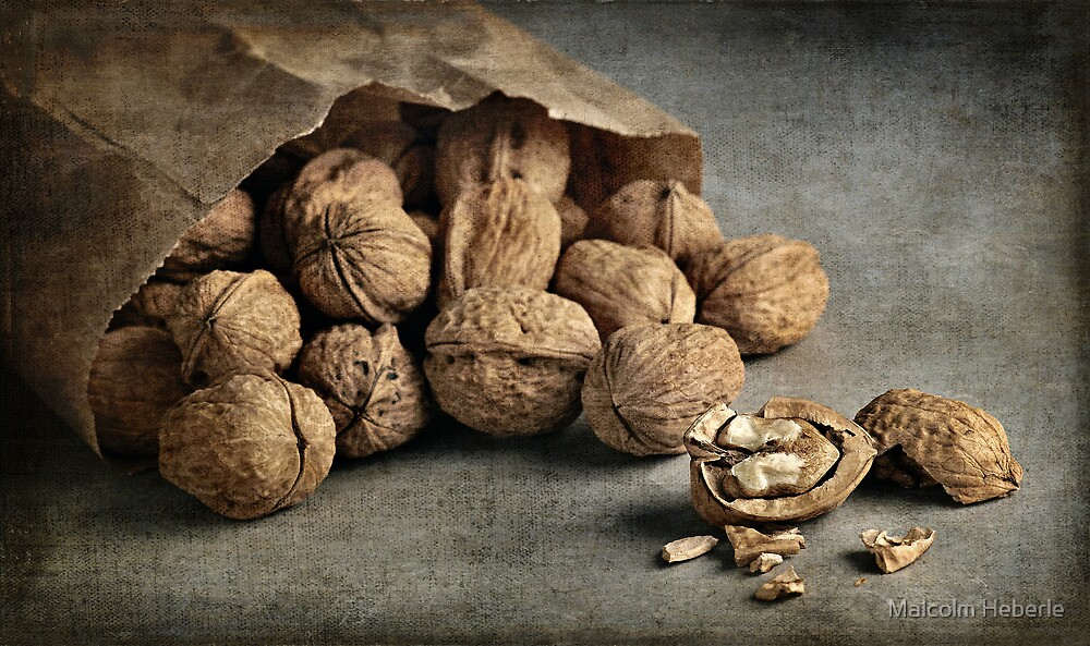Still Life #29  -  Bag of Walnuts by Malcolm Heberle