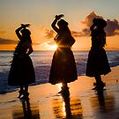 Hula Sunset #1 by NealStudios