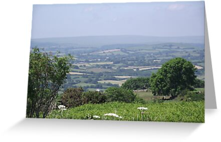 Another view of Devon UK by mike421
