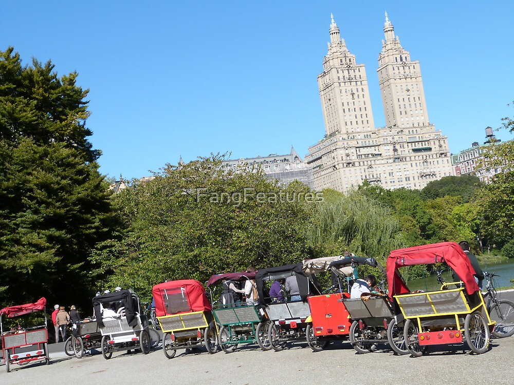 NYC Central Park Carriages by FangFeatures