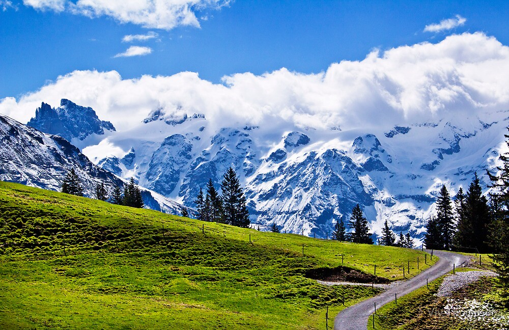 Switzerland in May by Viv Thompson