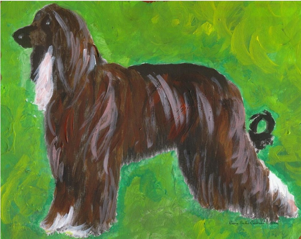 Afghan Hound Dog by Oldetimemercan