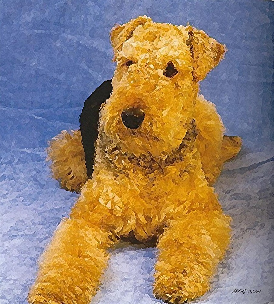Airedale Terrier Dog by Oldetimemercan
