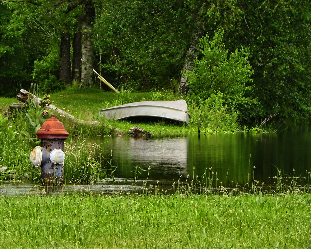 Overflowing Pond by PineSinger